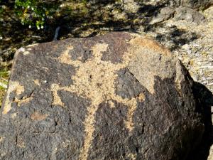 A petroglyph of a Chuckwalla in the Gila style.