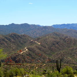 Another view of the Apache Trail.