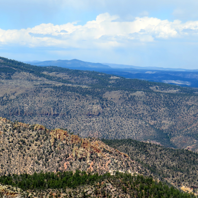 Mountains in the Gila National Forest