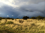 Open range and dark skies in New Mexico