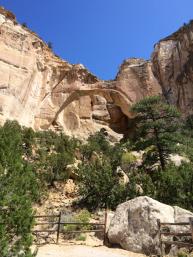 Large sandstone arch in El Malpais