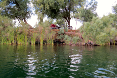 Our camp on the lower Colorado River. The river is very tame here.