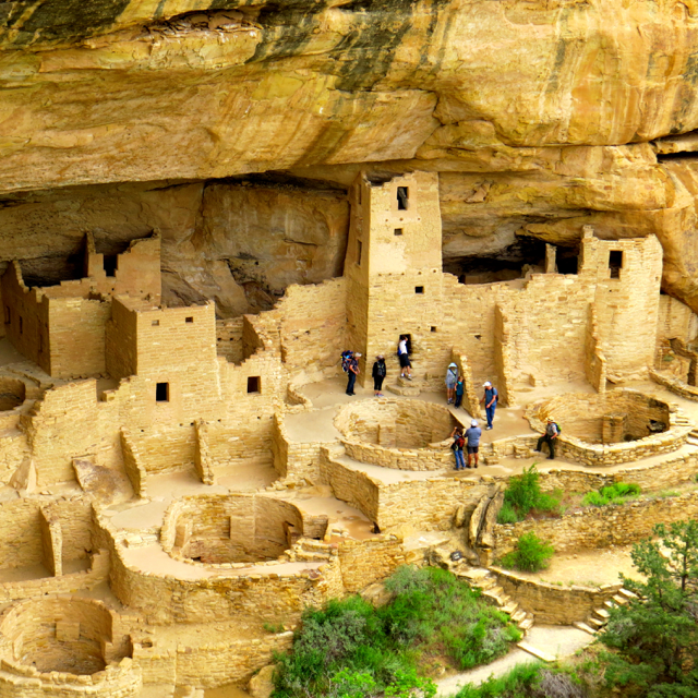 Cliff  Palace, one of the dwellings you can visit at this park.
